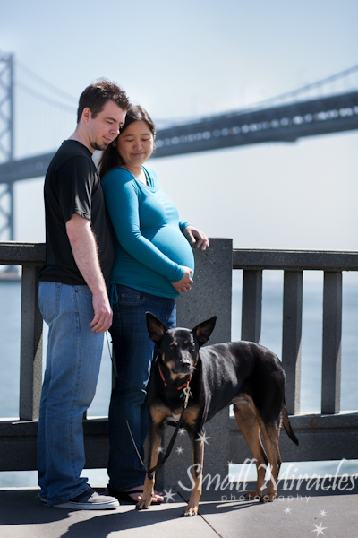 Husband and pregnant wife with dog in front of bay bridge