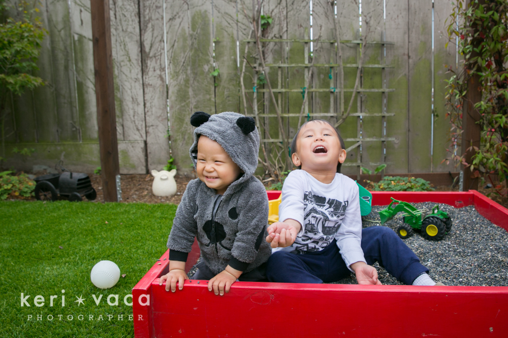 brothers playing in sandbox in backyard during family photo shoot
